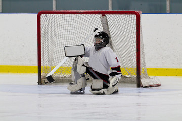 Ice hockey goaltender in front of net