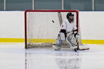 Young hockey goalie playing in net