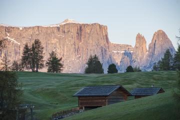 Alpe di Suisi,Italy, South Tirol,