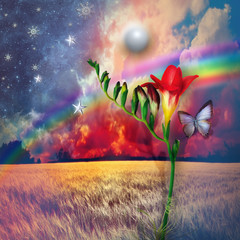 Starry landscape with freesia and rainbow