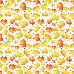 Autumn maple leaves pattern
