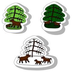 Wild boars under spruce