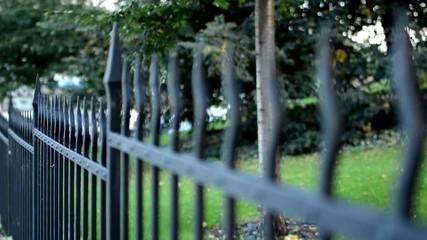 metal fence - garden