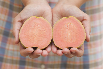 Sliced guava fruit in woman's hands