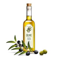Huile d'olive, olives et branche d'olivier