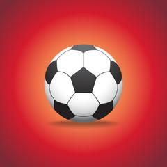 soccer ball on a gras