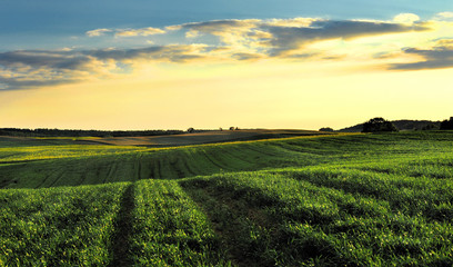 Morawy, Czechy , krajobraz wiejski