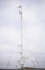 White Antenna