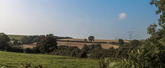 Time of the plenty: Irish landscape.