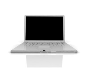 Professional Laptop with empty space
