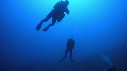 Diver Swim over Coral Reefs. Red Sea