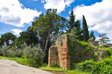 Spring in Tuscany, a walk in park near San Gimignano