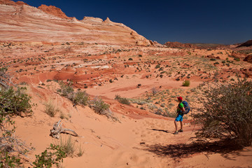 USA - man in coyote buttes recreational park - The wave