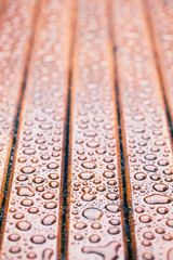 water drops on wooden garden table