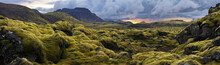 "Постер, картина, фотообои ""Surreal landscape with wooly moss at sunset in Iceland"""