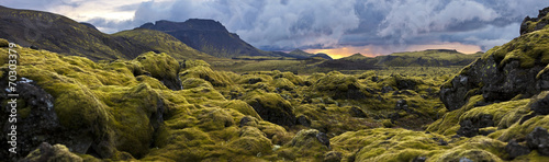 Leinwandbild Motiv Surreal landscape with wooly moss at sunset in Iceland