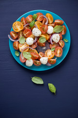 Vegetable salad with mozzarella over dark blue wooden background