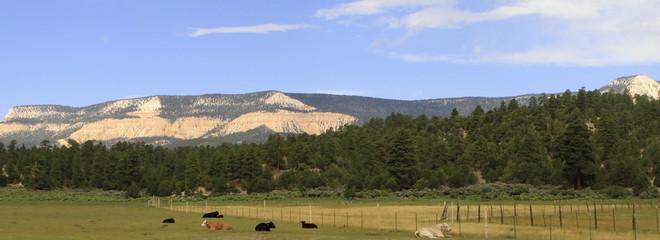 paysage de l'Utah