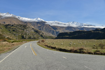 Highway Road streching to the mountains, South island