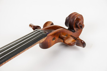 Violin scroll and pegs lying on white surface