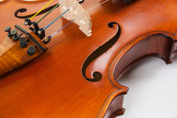 Close-up of violin body, fine tuners and bridge at angle