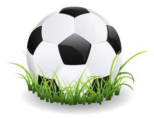 Soccer Ball with Grass