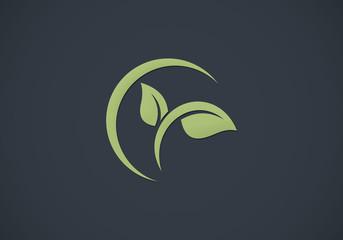 leaf plant spa eco vector logo