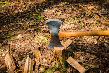 Gehacktes Holz im Wald mit Axt.