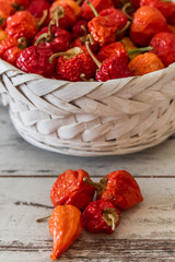 Red Hot Cherry Peppers