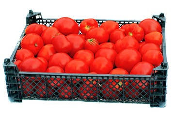 Ripe red tomatoes in a black plastic box isolated