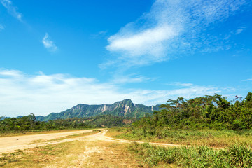 Dirt Road and Jungle Hills