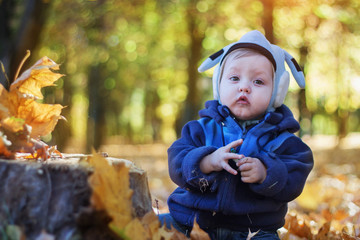 cheerful smiling little boy in the autumn park