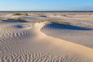 sand dunes on Dutch sea coast