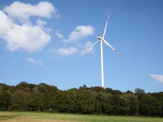 Windkraftanlage mit Wald