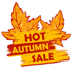 hot autumn sale with leaves, orange and brown drawn label