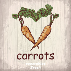 Fresh vegetables sketch of a carrots