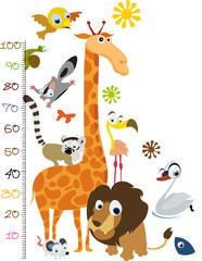 Medidor de Animales Africanos