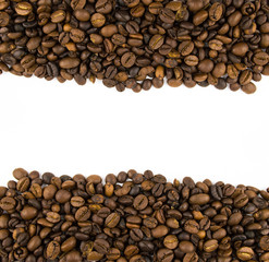 two rows of coffee beans