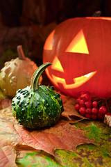 Still-life with pumpkins