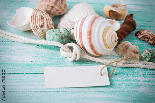 canvas print picture Marine items on wooden background.