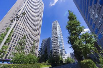 快晴青空と緑の 新宿高層ビル街を見上げる
