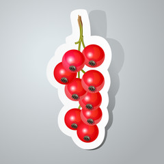 A sticker with currant