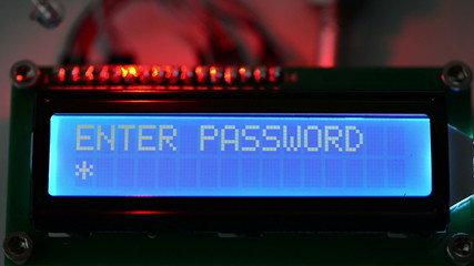 Password Check (Access Granted)