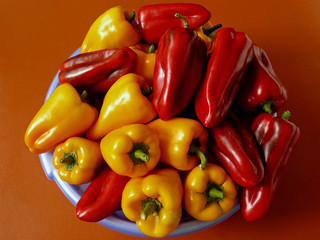 peppers harvest