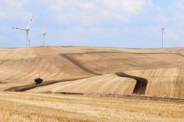 campi coltivati e energia eolica