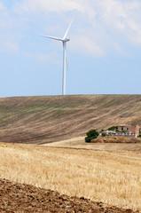 agricoltura e mulini a vento