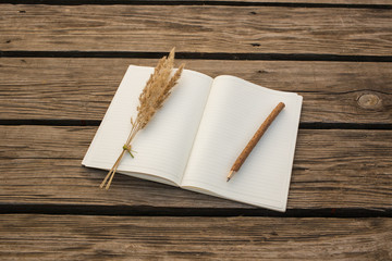 Blank open notebook, wooden pencil  on wooden background