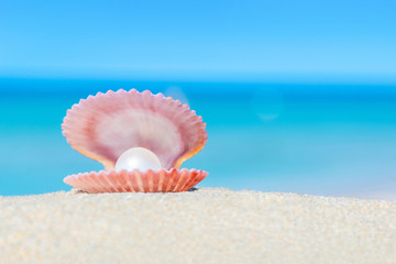 Open shell with a pearl on sandy beach