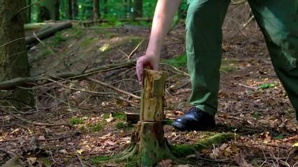 Mann hackt Holz im Wald mit Axt