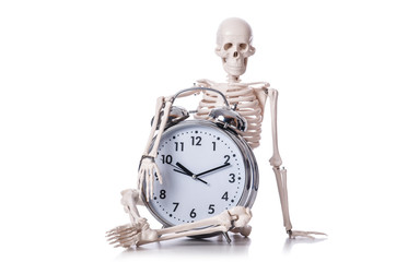 Skeleton with alarm clock on the white